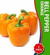 Bell Pepper (Orange) – Per Piece