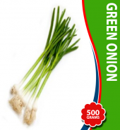 Green Onion (Hari Pyaz)